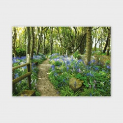 Happy Valley Trail, Orkney Greetings Card - A6